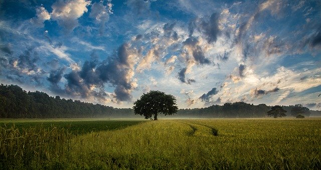 Zdravá příroda
