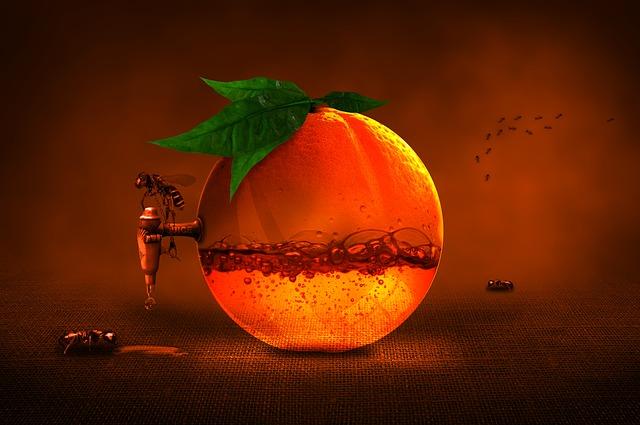 instantní vitamin C